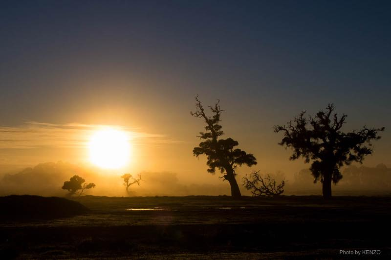sun-rise