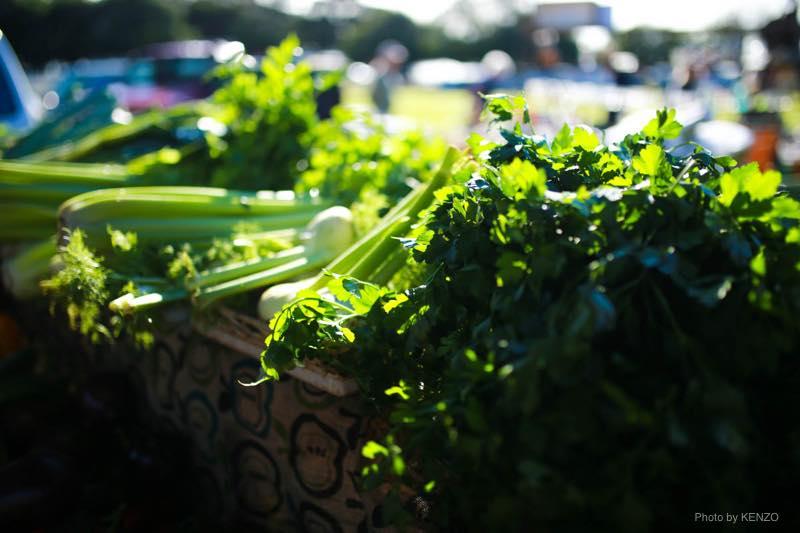 sunday-market